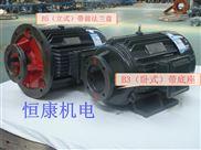供应Y2JD液压电机,CY14-1D/CY14-1B柱塞泵配套电动机