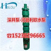 利欧QJ深井泵污水深井泵175QJ10-42/3潜水多级泵清水离心泵循环泵抽水泵排灌增压泵