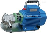 上海WCB手提式齿轮泵