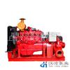 HCHC型全自動柴油機應急供水泵