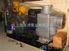HCZHCZ型固定式柴油機自吸泵
